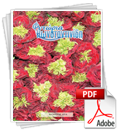 fitoria-katalogos